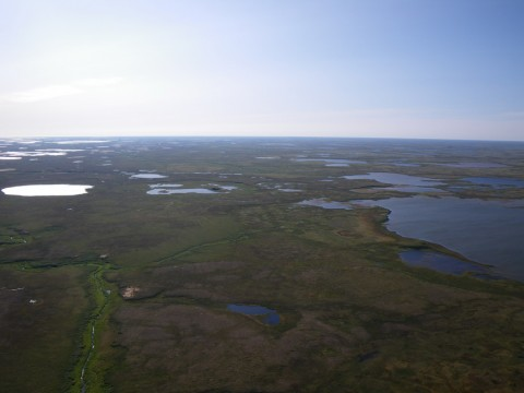 aerial view of Belyy Ostrov 4