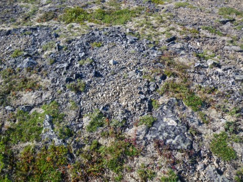 Sorted circles in Northern Ural Mountains