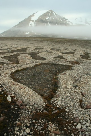 sorted circles near site Svalbard